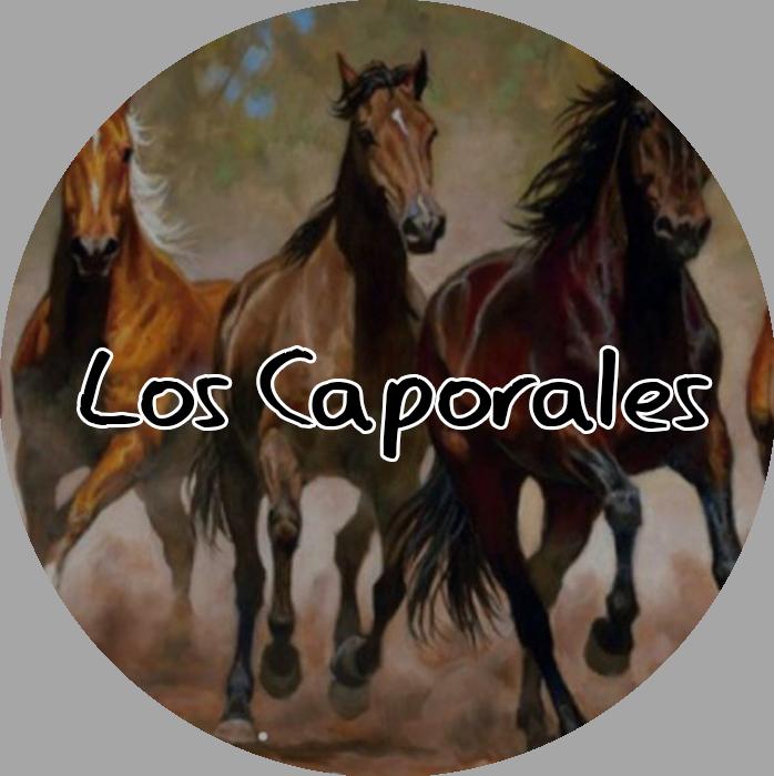 Restaurante Bar Los Caporales